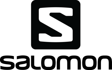 2013 Salomon logo