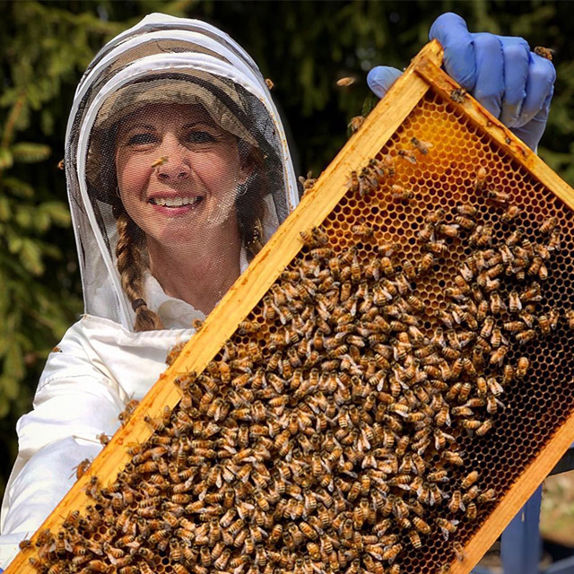 indigo_acres_apiary